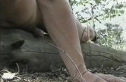 Humping a fallen shrub trunk in the woods