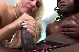 Hailey Beanfeast fucks a black T-girl - Shemale Idol